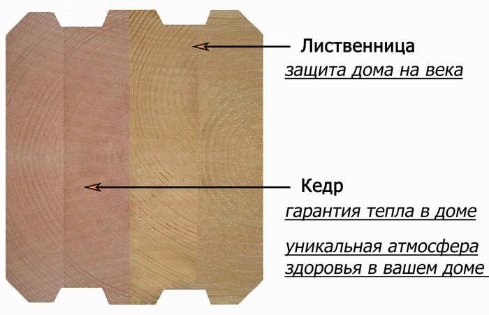 кедр-лиственница с надписями