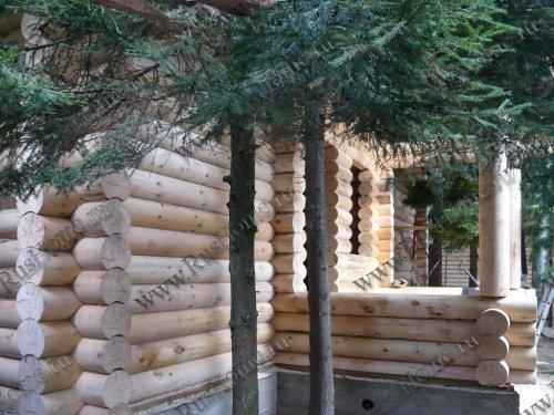 Дом из оцилиндрованного кедра