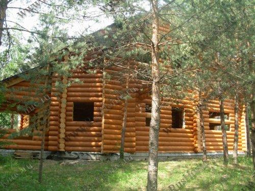 Дома из оцилиндрованного бревна из кедра